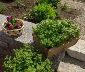 planters on tour