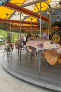 carousel in boston 15