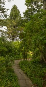 winding path, garden in falmouth