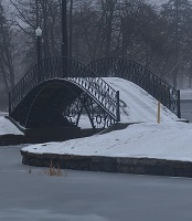 elm park bridge winter cropped