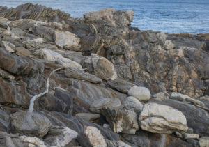 rocks-for-blog